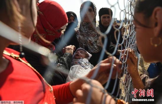 当地时间2016年10月26日,伊拉克埃尔比勒,因摩苏尔战事而逃离的难民在Khazer难民营与两年前到达此地的亲人隔着铁丝网相见。