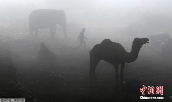 当地时间2016年12月8日,印度新德里雾霾天气持续,能见度低。
