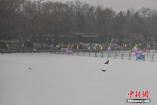 1月5日,北京在持续霾橙色预警的同时迎来2017年首场降雪。图为雪后的北京紫竹院公园。 <a target='_blank' href='http://www.chinanews.com/'>中新社</a>记者 崔楠 摄