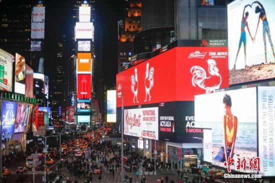 资料图:当地时间1月5日,中国生肖鸡亮相纽约时代广场。 <a target='_blank' href='http://www.chinanews.com/'>中新社</a>记者 廖攀 摄