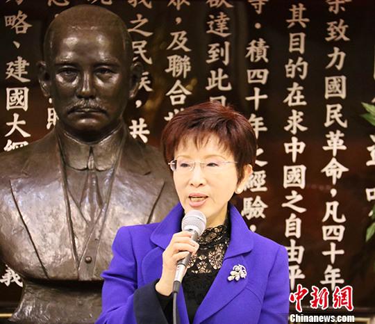 资料图:国民党主席洪秀柱。 中新社记者 刘丹 摄