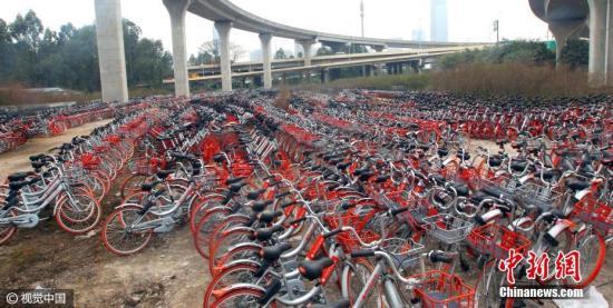 1月18日下午,广州海珠区新洲立交桥下摆满了共享单车。据记者观察,这些车目前处于无人使用的状态。 马强 摄 图片来源:视觉中国