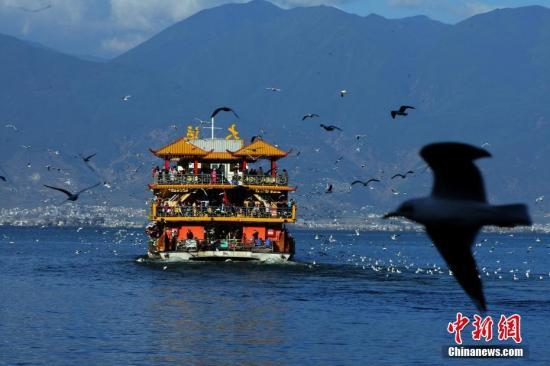 资料图:大理洱海。 中新社记者 李进红 摄
