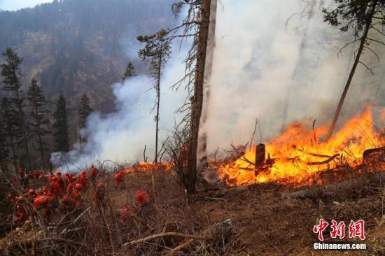 2月,四川甘孜州炉霍县雅德乡康古村境内发生草原火灾。范亮 摄