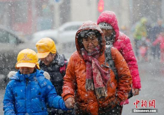 2月21日,北京迎来降雪,民众雪中出行。中新社记者 杜洋 摄