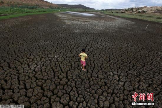 资料图:巴西东北遭遇史上最严重旱情。