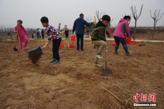 两个小朋友卖力地用铁锹为小树苗刨坑。 韩章云 摄