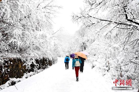 受寒潮影响,3月12日,甘肃崆峒山景区迎来一场鹅毛大雪。图为漫山雪花吸引游客踏雪嬉戏。徐振华 摄