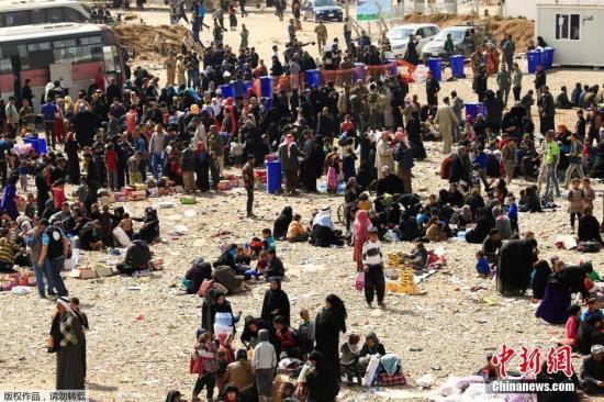 当地时间2017年3月14日,伊拉克摩苏尔,Hammam al-Alil难民营的难民,难民争抢救济面包。