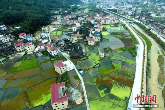 资料图:美丽的新农村。 王东明 摄