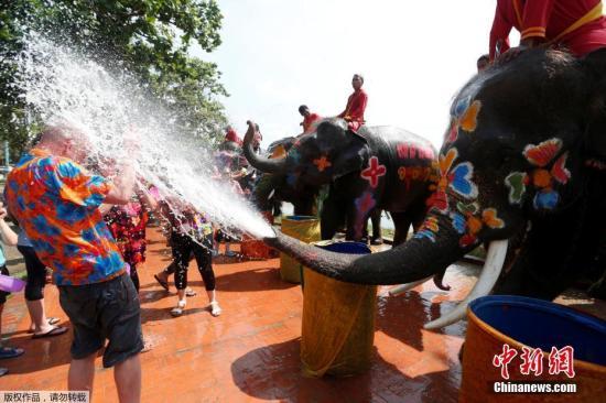 当地时间4月11日,泰国大城府,当地举行泼水节,大象用鼻子向游客身上喷水,气氛热烈。