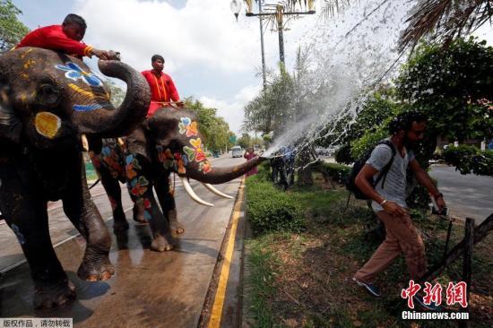 大象往过往行人身上喷水,节日气氛热烈。