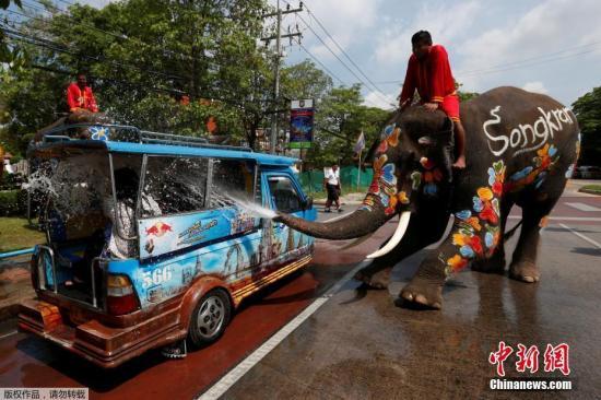 大象向一个车辆里喷水。