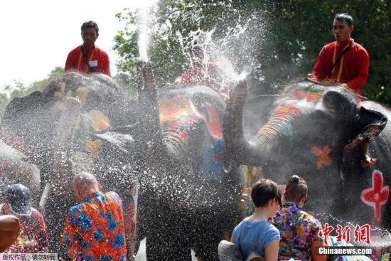 资料图:泰国宋干节,大象向游客泼水。