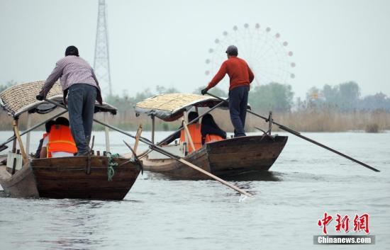 4月16日,游船驶出白洋淀游船码头。 中新社记者 毛建军 摄