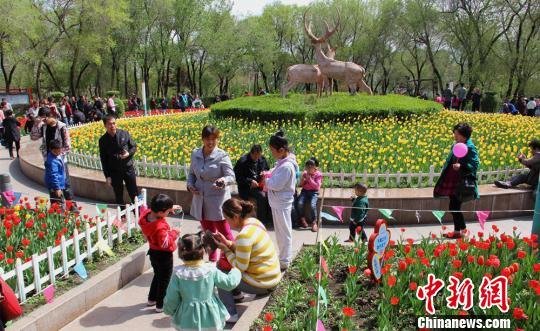 资料图:图为乌鲁木齐一处公园。 史玉江 摄