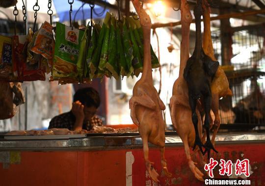 中国内地7天报告H7N9病例1例 疫情平稳