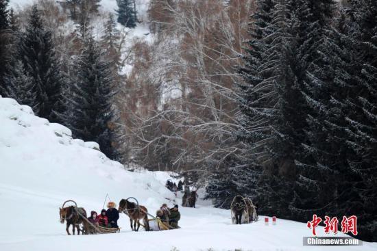 联合国教科文组织执行局会议5月5日决定,正式批准中国新疆可可托海国家地质公园列入世界地质公园网络名录,成为中国第35个联合国教科文组织世界地质公园。可可托海国家地质公园地处新疆东北部的富蕴县境内,是中国第一个以典型矿床和矿山遗址为主体景观的国家地质公园,加上独特的阿尔泰山花岗岩地貌景观和富蕴大地震遗迹,使它具有了丰富多样的科学内涵和美学意义。图为冬季的可可托海国家地质公园被冰雪覆盖,交通极其不便,游客乘坐马拉雪橇进入可可托海国家地质公园游览(资料图片)。中新社记者 刘新 摄