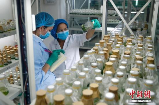 国办:强化药品价格常态化监管