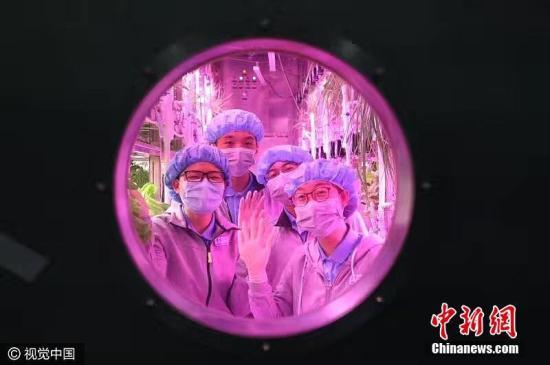 """资料图:2017年5月10日,北京,""""月宫365""""计划入舱仪式在北航""""月宫一号""""实验室举行。从当日起,8位北京航空航天大学的学生""""宇航员""""将分两批进入该校自主设计的密闭舱室""""月宫一号"""",开启365天的完全自主生活。""""月宫一号""""是全球第一个、也是密闭程度最高的四生物链环人工生态系统。 孔祥明 摄 图片来源:视觉中国 文字来源:中国网"""