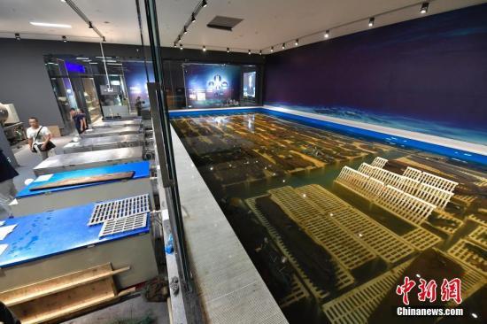 """""""华光礁1号""""沉船等待修复的出水船体。 <a target='_blank' href='http://www.chinanews.com/'>中新社</a>记者 骆云飞 摄"""