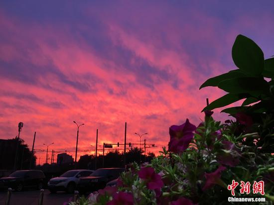 5月22日,北京,在经历了一天的雨水后,北京的天空迎来了醉人的晚霞。图为白石桥地区晚霞。 中新网记者 李霈韵 摄