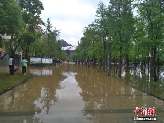6月15日,暴雨导致六盘水师范学院低洼处积水。中新社记者 钟欣 摄
