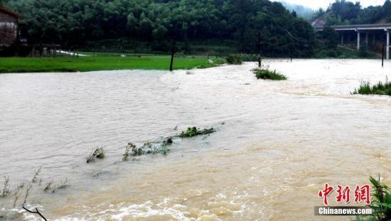 入汛以来,湖南多地先后降下暴雨。6月22日开始,湖南桃江县遭遇今年最强降雨,加之上游水库泄洪,资江桃江段水位连日来持续上涨,造成多地被洪水浸没。图为洪水淹没道路农田。 王鹏 摄