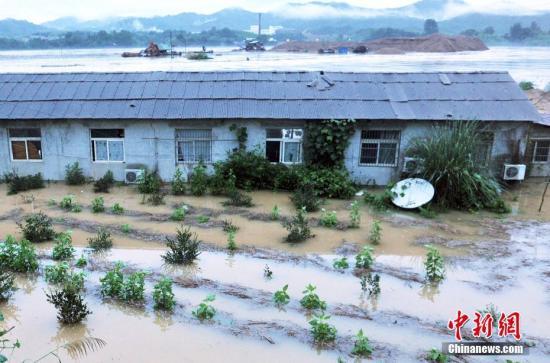 资料图:洪涝灾害。 卓忠伟 摄