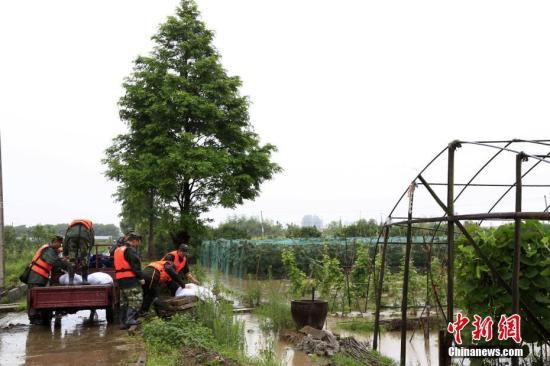 赣浙暴雨致电网受损  中国电力部门全力抢修复电