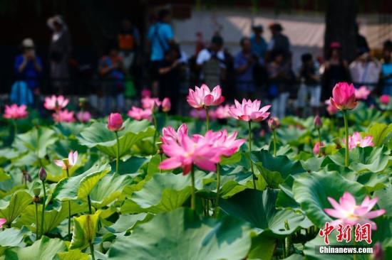 北京颁布新旅游条例首次确定民宿概念