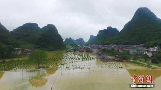 资料图:广西融安县泗顶镇儒南村拍摄被洪水淹没的农田。谭凯兴 摄