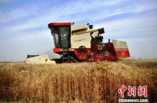 农业部:今年影响中国农产品市场四问题需重点关注306275