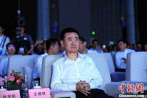 资料图:万达集团董事长王健林。 <a target='_blank' href='http://www.chinanews.com/'>中新社</a>记者 王舒 摄