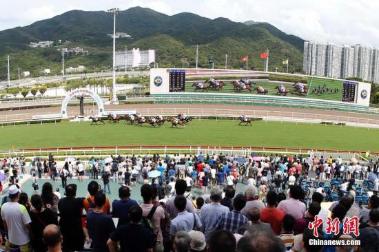 资料图:赛马。<a target='_blank' href='http://www.chinanews.com/'>中新社</a>发 香港赛马会 供图