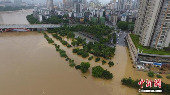 7月3日,因受连日暴雨影响,广西柳江河柳州段出现超警戒水位。图为沿江路段树木几乎被洪水淹没过树顶。 王以照 摄