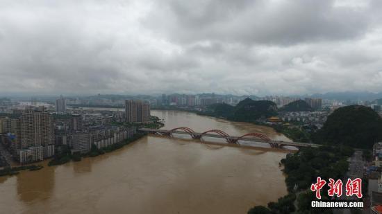 资料图:7月3日,因受连日暴雨影响,广西柳江河柳州段出现超警戒水位。 王以照 摄