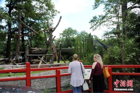 """阔别五年后,德国柏林终于再度迎来一对中国大熊猫。图为7月4日,两位游客在即将对公众开放的柏林动物园大熊猫馆前驻足。7月5日,来自中国的""""梦梦""""和""""娇庆""""将正式与德国公众见面。<a target='_blank' href='http://www.chinanews.com/'>中新社</a>记者 彭大伟 摄"""