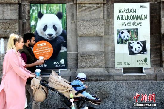 """阔别五年后,德国柏林终于再度迎来一对中国大熊猫。图为7月4日,一家三口经过柏林动物园外张贴的大熊猫海报。7月5日,这对来自中国的""""萌物""""将正式与德国公众见面。<a target='_blank' href='http://www.chinanews.com/'>中新社</a>记者 彭大伟 摄"""
