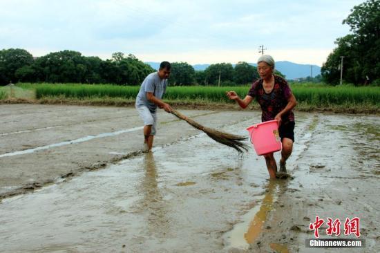 资料图:湖南遭遇洪涝灾害。卢文伟 摄