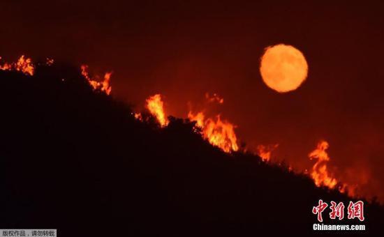 加州旱灾已经持续了5年,每年这个时候都会发生特大山火。过去数月,州内部分地区有降雨,缓和了旱情,一些地区发生山火时日期已迟于往年。图为加州圣马丽亚,满月在大火映红的天空中升起。