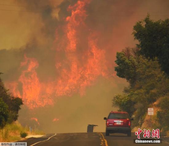 加州地区高温持续,洛杉矶的气温更打破了131年来的最高纪录。居高不下的气温为扑救工作带来了很大困难。图为加州圣巴巴拉市154号高速公路上的场景。