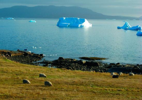 库加塔是亚北极区的一个农业文化景观,坐落于丹麦格陵兰岛南部。它见证了10世纪以来从冰岛迁徙到此的古爱斯基摩狩猎者、18世纪末以后在此发展起来的北欧农民、因纽特猎人及因纽特农业社区的文化历史。尽管两种文化的不同,北欧格陵兰人和欧洲因纽特人还是创造了基于农业、牧业及海洋哺乳动物狩猎业的文化景观。这一景观见证了北极地区最早出现的农业活动,以及北欧人在欧洲以外的定居扩张。 Kenneth H?egh 摄 图片来源:联合国教科文组织世界遗产中心官网