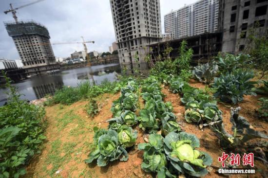 资料图:一搁置8年的城中村改造项目重新启动。<a target='_blank' href='http://www.chinanews.com/'>中新社</a>记者 李进红 摄