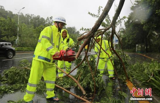 三亚公安交警在凤凰路上清理倒伏的树木。 <a target='_blank' href='http://www.chinanews.com/'>中新社</a>记者 尹海明 摄