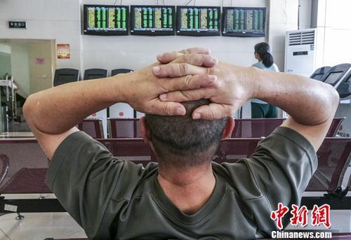 资料图:股民关注股市动态。 <a target='_blank' href='http://www.chinanews.com/'>中新社</a>记者 骆云飞 摄