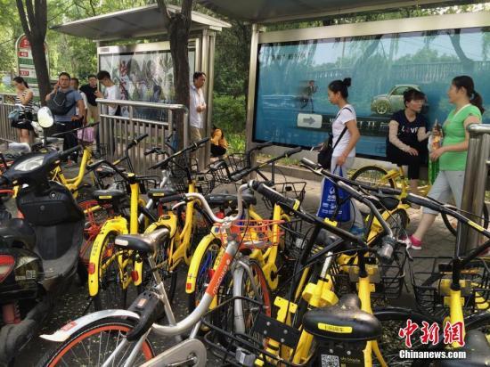 资料图:共享单车。<a target='_blank' href='http://www.chinanews.com/'>中新社</a>记者 刘关关 摄
