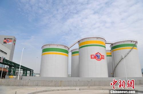 自今年5月中旬投产以来,位于福建自贸试验区厦门片区的台湾佳格厦门葵花油项现在现在已是一片火炎生产的景象。这是大陆最大的葵花油精炼油厂,现在年产能已达20万吨,展望五年内产值将达到30亿元人民币。图为2017年5月19日,台湾佳格厦门葵花油项现在投产。 中新社记者 张斌 摄