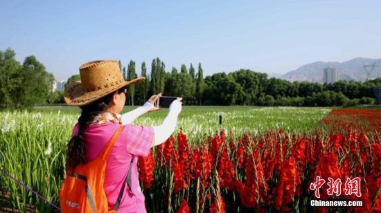 游人在花丛中拍照留影。侯奇志 摄