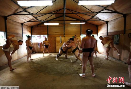 蒙古相扑手称霸日本却被迫退役 或有损两国关系
